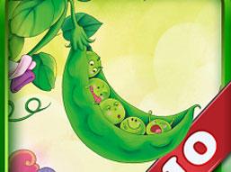 一个豆荚里的五颗豆的故事